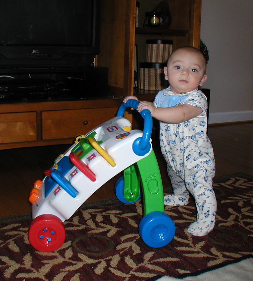 Name:  Max 5 months 1 small.jpg Views: 2149 Size:  594.8 KB