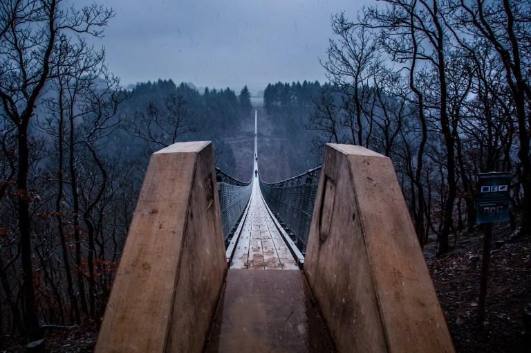 Name:  suspension bridge hängeseilbrücke geierlay  0406-Gemma-Geierlay-Germany's-Longest-Suspension-Bri.jpg Views: 3415 Size:  136.9 KB